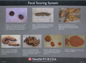 Fig 1 - Purina fecal scoring system